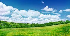 Summer scenery....