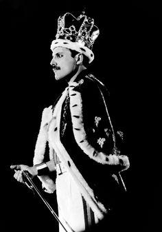 Freddie Mercury *¬*