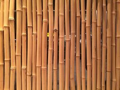 Have you heard of our discount offer? Be sure to like our page for off select products! Tag your friends to let them know! Bamboo Wall, Bamboo Fence, Fence Panels, Galvanized Steel, Fencing, Wood, Friends, Creative, Google