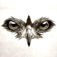 Hawk Eyes Tattoo Design