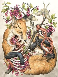 "I'm really loving St. Louis-based painter and illustrator Lauren Marx's series ""The American Wilderness"" which highlights the grotesque, yet strangely beautiful circle of life in the animal kingdom. I can't keep my eyes off her work.   ""Animals always have been, and always will be, my passion. They have been the subjects of my drawings ever since I was a child. I blame it on weekends spent at the Saint Louis Zoo and endless hours watching National Geographic's Mutual of Omaha: Wild…"