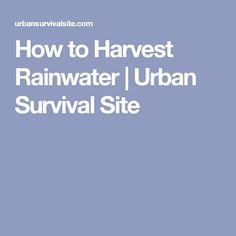 How to Harvest Rainwater | Urban Survival Site