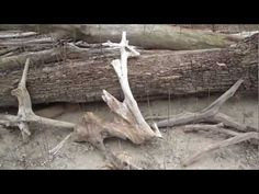 DIY Making Your Own Driftwood For Your Planted Aquarium - YouTube