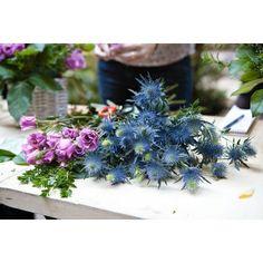 Bono regalo curso de flores