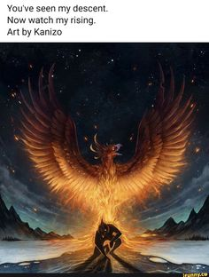 You've seen my descent. Art by Kanizo - iFunny :) Phoenix Artwork, Phoenix Images, Mythical Creatures Art, Fantasy Creatures, Dark Fantasy Art, Fantasy Artwork, Phoenix Bird Tattoos, Real Phoenix Bird, Fire Art