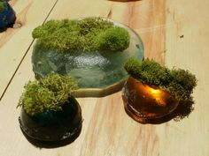 moss baubles preserved moss in kiln cast recycled glass Bottle Cutter, Fire Glass, Recycled Glass, Glass Bottles, Preserves, Terrarium, Recycling, It Cast, Jar