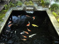 Waterfall idea for my Koi Pond. My current one needs a redo.