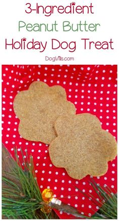 While you& baking the Christmas cookies this year, don& forget to whip up a special holiday dog treat for Fido! Check out our easy recipe! Homemade Dog Cookies, Homemade Dog Food, Diy Dog Treats, Healthy Dog Treats, Dog Biscuit Recipes, Dog Food Recipes, Easy Dog Treat Recipes, Can Dogs Eat, Dog Biscuits