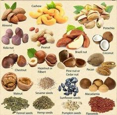 Types of nuts and seeds