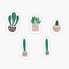 Succulents; Where flowers bloom, so does hope. • Millions of unique designs by independent artists. Find your thing. Buy Succulents, Artist Names, Iphone Wallet, Sticker Design, Finding Yourself, Bloom, Artists, Stickers, Flowers