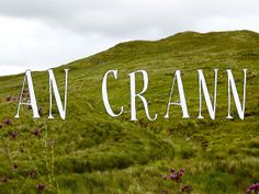 Gaeltacht Awardee, Emma Carlson, has a Kickstarter project called An Crann. Irish Language, New Neighbors, Her Cut, Raise Funds, Projects, Log Projects, Blue Prints