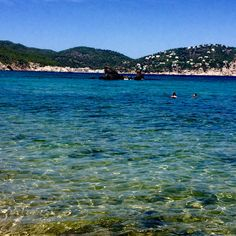 Es figueral. Agost 2015 Ibiza, River, Outdoor, Outdoors, Outdoor Games, The Great Outdoors, Ibiza Town, Rivers