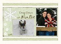 Christmas Card: Dog Days of Winter