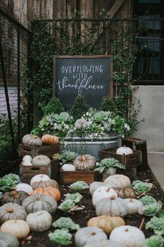 Our trip to Waco!  Silos Baking Co. Magnolia Market. Magnolia Silos. Waco, TX  Thanksgiving Decor. Fall Decor
