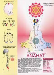 svadhisthana chakra ile ilgili görsel sonucu