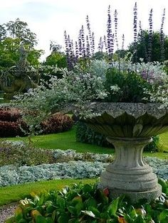 Sensational planting of this giant antique urn
