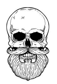 Crânio Barbudo