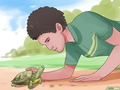 Comment caresser une tortue: 14 étapes
