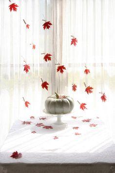 """falling leaves"" curtain"