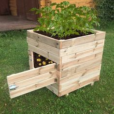 <p>Growing your own produce at home has never been easier with this Zest 4 Leisure Square Potato Planter. This durable square potato planter is pressure treated to prevent it from rotting and has a handy side door so you can pick as many potatoes as you like. The planter can also be used for a large variety of other home grown vegetables. </p>