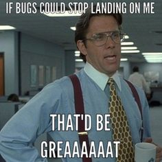 ...bugs could stop landing on me...