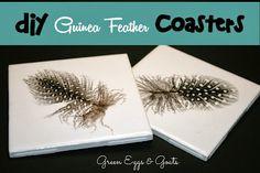 Easy DIY guinea feather coasters.  Too cute!