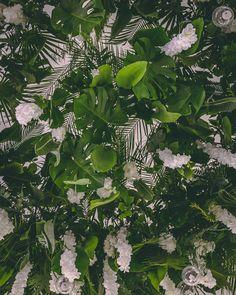 Maison DADOO - nunta cu tematica exotica Studiourile Buftea #wedding #ceremony #eventsetup #eventdesign #eventdecor #tablesetup #exotic #whiteandgreen #flowers #flowerpower #flowerart #flowerlover #leaves #flowermagic #greenery #flowerdesign #tablesetup #tableflowers #centerpiece #tabledecor #beautiful #maisondadoo #dadooevents #dadoo #flowerdecor #flowercenterpiece #bigflowers #flowerinstallation #bride #bouquet #beautiful #candybar #winebar Flower Centerpieces, Flower Decorations, Table Decorations, Table Flowers, Big Flowers, Exotic Wedding, Flower Installation, Table Set Up, Event Decor