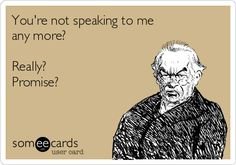 Funny Ecard - Youre not speaking to me - http://jokideo.com/funny-ecard-youre-not-speaking-to-me/