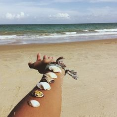 #coquillage #shell #fouta desfoutas.com