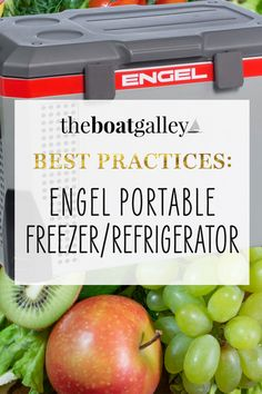 Need a refrigerator or freezer?  The Engle portable refrigerator/freezers and drop-in units are energy efficient and super-easy to install! Freezers, Refrigerator Freezer, Types Of Food, Energy Efficiency, Easy Projects, Food Storage, Super Easy, Food To Make, Cooking Recipes