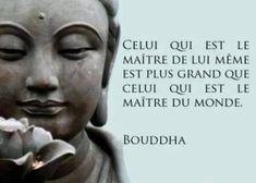 Wisdom Quotes, Words Quotes, Life Quotes, Happiness Quotes, Insightful Quotes, Inspirational Quotes, Motivation Sentences, Buddhist Quotes, Quote Citation