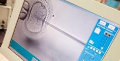 In vitro fertilization: How the IVF lab works