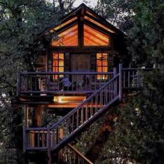 Tree house living...