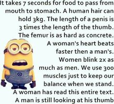 Minion hunan body humor