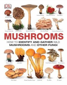 An authoritative field guide to more than 450 species of wild mushrooms from around the world, Mushrooms shows the life cycle and features of a mushroom, what supplies are needed for mushroom foraging