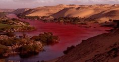 ISRAEL: STRANGE ENVIRONMENTAL DISASTER AFFLICTS JORDAN RIVER. The water of the river has turned to a dark red color over more than 35 kilometers, emanating a strong and nauseating sulphurous odor and killing thousands of fish, frogs and aquatic birds. Dec 13, 2014 ... ...  END OF TIME / LAST DAYS SIGNS  Revelation 8:9 1/3 of sea life die...  Revelation 11:6 waters to turn to (appear as) blood...