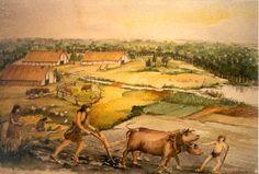 Hier zie je de boeren aan het werk. Ze hebben akkers en gebruiken dieren om het gewas van de velden te halen. Dit is een van hun middelen van bestaan. Dit is hun economie