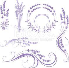 lavender stock vector art 17617041 - iStock