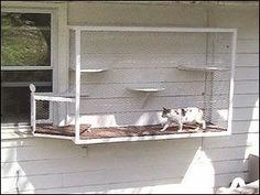 Michelle - Blog #Catio Fonte :http://blog.mysanantonio.com/animals/2013/08/creative-catio-enclosures-keep-cats-safe-in-their-yards/#14820101=4