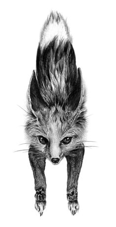 Fox door knocker.