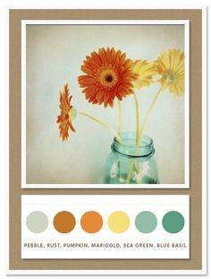 Bedroom color inspiration:  pebble, rust, pumpkin, marigold, sea green, blue basil by rena
