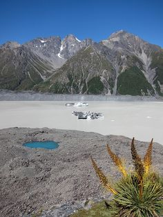 New Zealand scenery _ Big mountains, a little blue lake, icebergs... by Brazilian Traveller, via Flickr