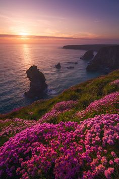 Blooming cliffs on 500px by Milos Lach, Gloucester, UK☀ 600✱900px-rating:92.5◉Photo location: Google Maps
