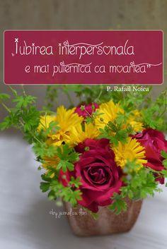 #citat #citate #RafailNoica #Dragoste #iubire #jurnalcuflori #blogromanesc