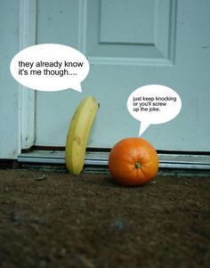 knock knock joke Random Pictures Photo Gallery : theBERRY