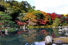 Image result for tenryuji temple kyoto