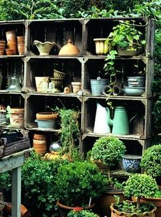 Rustic shelves -love for outside
