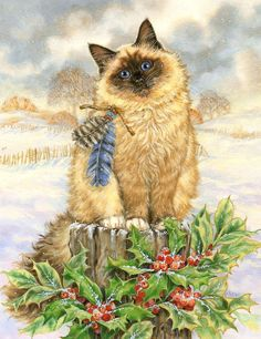 Christmas cat by Donna Race