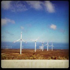 Mirador parque eólico la canela, IV región, Chile