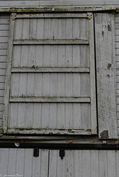 old barn door https://www.flickr.com/photos/132849904@N08/shares/XAM7az | estelle greenleaf's photos